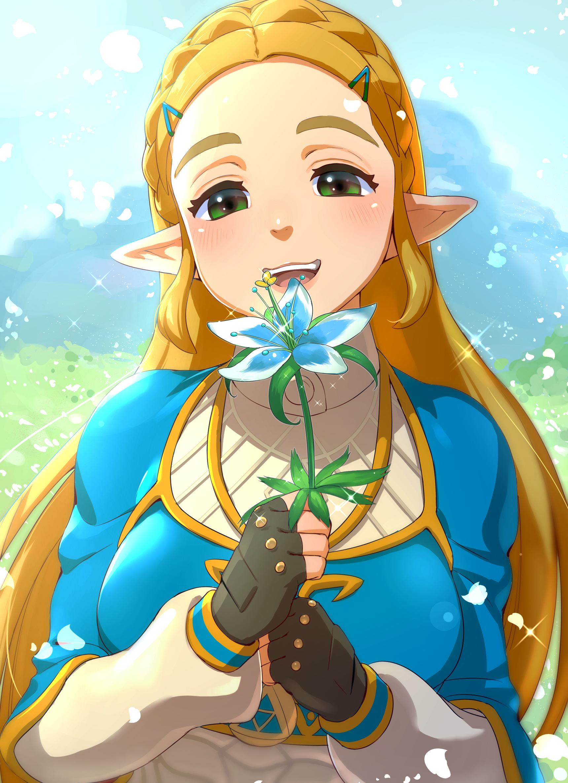 Zelda porn pic 68