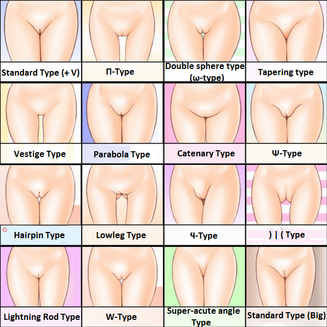 How many types of porn