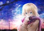 1girl blonde_hair blue_eyes blue_sky cloud cloudy_sky coat dated hair_between_eyes highres nuts_p_nuts original outdoors parted_lips scarf short_hair signature sky solo