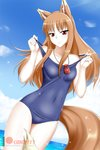 1girl alfred_cullado animal_ears blue_sky blue_swimsuit breasts brown_hair cloud collarbone covered_navel cowboy_shot day dutch_angle eyebrows_visible_through_hair floating_hair highres holo jewelry long_hair looking_at_viewer necklace ocean one-piece_swimsuit outdoors pouch red_eyes school_swimsuit shiny shiny_hair sky small_breasts smile solo sparkle spice_and_wolf standing swimsuit tail watermark wolf_ears wolf_tail