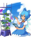 1girl bangs blue_bow blue_dress blue_eyes blue_hair blush book bow cirno dark_skin dress flower hair_bow highres ice ice_wings ksk_(semicha_keisuke) o3o pencil plant puffy_short_sleeves puffy_sleeves red_ribbon ribbon seiza shirt short_hair short_sleeves simple_background sitting solo sunflower tan tanned_cirno touhou white_shirt wings