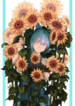 1girl bangs bare_arms blue_background blue_bow blue_dress blue_eyes blue_hair bow cirno commentary dress flower grin hair_bow highres holding holding_flower looking_at_viewer mefomefo red_ribbon ribbon short_hair smile solo standing sunflower tanned_cirno teeth touhou two-tone_background white_background