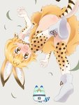 1girl animal_ear_fluff animal_ears ass bent_over blonde_hair blush bow bowtie commentary convenient_leg elbow_gloves extra_ears gloves kemono_friends lucky_beast_(kemono_friends) no_panties object_on_head panties panties_on_head panties_removed pikuharu print_gloves print_legwear print_neckwear serval_(kemono_friends) serval_ears serval_print serval_tail short_hair simple_background tail thighhighs underwear