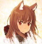 1girl angry animal_ears brown_hair check_commentary commentary_request eyebrows_visible_through_hair holo long_hair looking_at_viewer red_eyes solo spice_and_wolf takhino wolf_ears wolf_girl