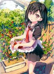 1girl :d absurdres apron artist_name black_hair blush bush cherry_tomato collarbone day eyebrows_visible_through_hair eyes_visible_through_hair food fruit garden hair_ornament hair_over_one_eye hair_scrunchie highres image_sample kantoku looking_at_viewer necktie one_side_up open_mouth original outdoors plaid plaid_collar plant potted_plant purple_eyes red_neckwear rock scrunchie shizuku_(kantoku) short_hair skirt skirt_basket sleeves_rolled_up smile solo standing tomato tomato_plant trellis tsurime vegetable yandere_sample