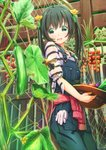 1girl :d abo_(kawatasyunnnosukesabu) bangs bee black_eyes black_hair bug cherry_tomato clothes_around_waist commentary_request cucumber day eggplant flower gloves gloves_removed green_nails hair_flower hair_ornament hat hat_basket hat_removed headwear_removed highres holding holding_hat insect long_hair looking_at_viewer nail_polish open_mouth original outdoors overalls plaid plaid_shirt plant red_shirt shirt shirt_around_waist short_sleeves smile solo striped striped_shirt tied_sleeves tomato tomato_plant vines white_gloves