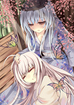 2girls ahoge alternate_costume blue_hair breasts brown_eyes cherry_blossoms closed_eyes flower fujiwara_no_mokou hat japanese_clothes kamishirasawa_keine long_hair medium_breasts multiple_girls obi on_lap open_mouth petting rain_lan sash sleeping touhou very_long_hair white_hair