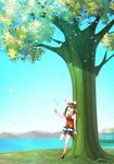 1girl :d absurdres bike_shorts black_footwear black_shorts breasts brown_hair day happy haruka_(pokemon) highres long_hair medium_breasts nature open_mouth outdoors petals pokemon pokemon_(game) pokemon_oras red_shirt shirt shoes shorts smile solo standing tree water white_shorts yuihiko