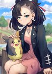 1girl absurdres asymmetrical_bangs bangs black_hair black_jacket blue_eyes blue_sky blush_stickers choker day dress ear_piercing expressionless fence gen_8_pokemon hair_ribbon highres jacket long_sleeves looking_at_viewer mary_(pokemon) morpeko morpeko_(full) oomura_saki outdoors petting piercing pink_dress pink_ribbon pokemon pokemon_(creature) pokemon_(game) pokemon_on_lap pokemon_swsh ribbon river sitting_on_fence sky studded_jacket tree twintails
