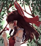 1girl bow brown_hair day detached_sleeves floating_hair flower from_side hair_bow hair_tubes hakurei_reimu hand_up highres holding holding_flower long_hair looking_at_viewer namesake outdoors profile rankasei red_bow red_eyes red_flower reimu_(flower) ribbon-trimmed_sleeves ribbon_trim sarashi side_glance sidelocks solo touhou upper_body vest