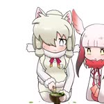 2girls alpaca_suri_(kemono_friends) animal_ears animated commentary_request cup epilepsy_warning facing_viewer fur_collar fur_trim gradient_hair hair_over_one_eye japanese_crested_ibis_(kemono_friends) kemono_friends kneeling mp4 multicolored_hair multiple_girls pink_hair red_hair simple_background tagme taro_(taro) tea teacup white_background white_hair
