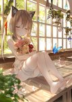 1girl amafuyu animal_ears bandaged_leg bandages bangs bare_arms bare_legs bare_shoulders barefoot blush bouquet bug butterfly cat_ears closed_eyes closed_mouth collar commentary day dress eyebrows_visible_through_hair fake_animal_ears flower hair_ribbon highres holding holding_bouquet indoors insect jar long_hair on_table original panties pantyshot pantyshot_(sitting) pink_flower plant ponytail potted_plant red_flower red_ribbon ribbon rose sidelocks sitting sleeveless sleeveless_dress smile solo speaker sunlight table underwear upskirt white_dress white_flower white_panties white_rose window yellow_flower yellow_rose