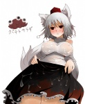 1girl animal_ears arano_oki breasts grey_hair hat inubashiri_momiji large_breasts red_eyes solo tail the_iron_of_yin_and_yang tokin_hat touhou wet wet_clothes wolf_ears wolf_tail