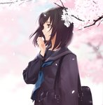 1girl bag bangs black_hair black_sailor_collar black_serafuku blue_neckwear blurry blurry_background brown_eyes cherry_blossoms closed_mouth commentary crying crying_with_eyes_open depth_of_field flower from_side hand_up highres holding holding_flower long_sleeves looking_away medium_hair neckerchief original outdoors petals sailor_collar school_bag school_uniform serafuku shoulder_bag solo tears tree upper_body urata_asao wind