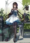 1girl absurdres alternate_costume bangs black_footwear black_legwear blunt_bangs blush breasts bridal_gauntlets brown_hair cactus cleavage closed_umbrella dated day detached_collar dress dsr-50_(girls_frontline) flower girls_frontline hair_flower hair_ornament hand_on_own_chest highres holding holding_umbrella kanryourei large_breasts long_hair looking_away mid-stride outdoors pantyhose plant potted_plant pumps red_eyes shade sidelocks smile solo umbrella very_long_hair walking white_dress wind wind_lift
