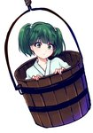 1girl bucket green_eyes green_hair hair_bobbles hair_ornament in_bucket in_container kisume short_hair solo touhou twintails uranaishi_(miraura)