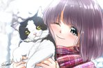 1girl bangs blue_eyes blurry blurry_background cat commentary_request day depth_of_field eyebrows_visible_through_hair head_tilt holding holding_cat looking_at_viewer one_eye_closed original outdoors plaid plaid_scarf purple_hair scarf short_hair signature smile solo soragane_(banisinngurei) upper_body winter