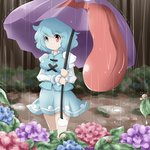 1girl blue_eyes blue_hair flower forest heterochromia highres hydrangea juliet_sleeves karakasa_obake kikurage_(sugi222) leaf long_sleeves looking_at_viewer nature outdoors puddle puffy_sleeves rain red_eyes short_hair skirt skirt_set smile snail solo tatara_kogasa touhou umbrella