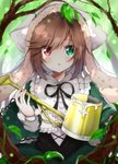 1girl blush bonnet brown_hair dress forest frills green_dress green_eyes hairband heterochromia highres himemiya_shuang lolita_fashion lolita_hairband long_hair multicolored multicolored_eyes nature open_mouth red_eyes rozen_maiden solo suiseiseki watering_can