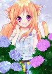 1girl :d animal_ear_fluff animal_ears bangs bare_shoulders blue_camisole blue_flower blue_skirt camisole cat_ears cat_girl cat_tail collarbone commentary_request eyebrows_visible_through_hair fang flower hair_between_eyes hand_up hydrangea long_hair misaki_(misaki86) off-shoulder_shirt off_shoulder open_mouth orange_hair original pink_flower pleated_skirt puffy_short_sleeves puffy_sleeves purple_eyes purple_flower rain shirt short_sleeves skirt smile solo tail tail_raised white_shirt