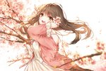 1girl :d arm_up bangs bare_shoulders blurry blush brown_hair cherry_blossoms commentary day depth_of_field eyebrows_visible_through_hair flower from_side green_eyes hair_flower hair_ornament holding holding_flower jacket kh_(kh_1128) long_hair long_sleeves looking_at_viewer looking_to_the_side off_shoulder open_clothes open_jacket open_mouth original outdoors panties pink_flower pink_jacket smile solo tareme tree_branch underwear upper_body white_panties