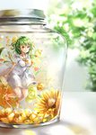 1girl alternate_costume alternate_hairstyle ankle_ribbon barefoot blurry blurry_background blush breasts collarbone commentary dress eyebrows_visible_through_hair flower frilled_shirt_collar frills green_hair hair_between_eyes hair_flower hair_ornament half_updo highres in_container jar kazami_yuuka large_breasts lens_flare looking_at_viewer minigirl puffy_short_sleeves puffy_sleeves red_eyes ribbon rose sailor_collar sailor_dress shironeko_yuuki short_hair short_sleeves smile solo sunflower thighs touhou white_dress yellow_flower yellow_neckwear yellow_ribbon yellow_rose