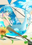 1girl animal_ears ball beachball bikini blue_eyes blue_hair blue_sky breasts cloud cup day flower full_body green_eyes groin head_fins highres in_container in_cup looking_at_viewer medium_breasts mermaid monster_girl open_mouth outdoors radiosity_(yousei) short_hair sky solo sunflower swimsuit touhou umbrella wakasagihime