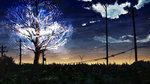 blue_sky cable cherry_blossoms cloud cloudy_sky commentary_request glowing grass highres night night_sky no_humans original outdoors scenery sky sunrise telephone_pole tree y_y_(ysk_ygc)