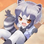 1girl :d animal_ear_fluff animal_ears black_neckwear black_skirt bow bowtie box brown_eyes cardboard_box commentary common_raccoon_(kemono_friends) elbow_gloves extra_ears eyebrows_visible_through_hair eyes_visible_through_hair fang fur_trim gloves grey_hair highres in_box in_container kemono_friends looking_at_viewer multicolored_hair open_mouth pantyhose puffy_short_sleeves puffy_sleeves raccoon_ears raccoon_tail short_hair short_sleeves skirt smile solo tail white_hair white_legwear xxsaakoxx