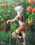 1boy apple apple_tree back bandaid bandaid_on_arm bandaid_on_knee blue_eyes blush food fruit fruit_tree hunter_x_hunter killua_zoldyck ladder lifted_by_self looking_away male_focus midriff orchard outdoors shailo shirt_lift shoes shorts silver_hair sweat tank_top tree tumblr_username