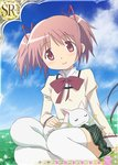 1girl bow hair_ribbon kaname_madoka kyubey mahou_shoujo_madoka_magica official_art petting pink_eyes pink_hair ribbon school_uniform sitting skirt sleeping smile thighhighs trading_card twintails white_legwear
