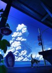 bench blue blue_sky calico cat cloud cloudy_sky day flower horizon leaf morning_glory no_humans ocean original outdoors power_lines scenery sky tail takeyan_(774gon) traffic_light train_station