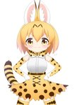 1girl >:) animal_ears bangs blonde_hair blush bow bowtie breasts brown_eyes closed_mouth commentary_request cowboy_shot elbow_gloves extra_ears eyebrows_visible_through_hair gloves hair_between_eyes hands_on_hips high-waist_skirt highres kemono_friends medium_breasts print_gloves print_legwear print_neckwear print_skirt serval_(kemono_friends) serval_ears serval_print serval_tail shin01571 shirt simple_background skirt sleeveless sleeveless_shirt smile smug solo striped_tail tail thighhighs v-shaped_eyebrows white_background white_shirt