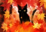 animal autumn bell black_cat cat cat_focus falling_leaves jingle_bell leaf maple_leaf mouth_hold no_humans original oropi uneven_eyes yellow_sclera