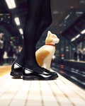 1girl absurdres animal black_footwear black_legwear blurry blurry_background cat cat_focus closed_eyes closed_mouth depth_of_field from_side guweiz highres loafers lower_body original pantyhose profile railroad_tracks shoes smile standing train_station train_station_platform whiskers