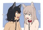 2girls andou_(girls_und_panzer) angry animal_ears bangs bare_shoulders black_hair blue_background blue_eyes breasts brown_eyes cleavage collar commentary dark_skin dog_collar eyebrows_visible_through_hair eyelashes fang frown girls_und_panzer itsumi_erika kemonomimi_mode leash long_hair looking_at_another medium_hair messy_hair multiple_girls nude open_mouth outside_border silver_hair torinone translated wolf_ears