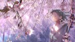 1girl animated black_hair blurry blurry_foreground buttons cherry_blossoms closed_eyes closed_mouth commentary crying dappled_sunlight day depth_of_field grey_cardigan huge_filesize lens_flare light light_rays light_smile long_sleeves mocha_(cotton) original petals sailor_collar scenery short_hair signature solo spring_(season) standing sunbeam sunlight tears tree ugoira upper_body white_sailor_collar wide_shot