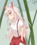 1girl bamboo bangs blush bow breasts commentary_request cowboy_shot eyebrows_visible_through_hair fujiwara_no_mokou green_background hair_bow hands_in_pockets long_hair medium_breasts ofuda pants raki_(for03ge) red_eyes red_pants shirt short_sleeves sidelocks silver_hair smile solo standing touhou very_long_hair white_bow white_shirt wing_collar