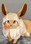 :3 artist_name clothed_pokemon commentary dvixie eevee english_commentary full_body gen_1_pokemon grey_background happy highres hood jpeg_artifacts looking_up no_humans open_mouth outdoors pokemon pokemon_(creature) purple_eyes rain raincoat see-through signature smile solo standing teeth