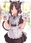 1girl absurdres alternate_costume animal_ears apron bangs blurry blurry_background blush brown_dress brown_hair cat_ears cat_girl cat_tail center_frills closed_mouth collared_shirt commentary_request depth_of_field dress enmaided eyebrows_visible_through_hair folded_ponytail frilled_apron frills gloves hair_ribbon hands_up highres kaguya-sama_wa_kokurasetai_~tensai-tachi_no_renai_zunousen~ kemonomimi_mode maid maid_headdress norazura parted_bangs paw_gloves paws pleated_dress puffy_short_sleeves puffy_sleeves red_eyes red_ribbon ribbon shinomiya_kaguya shirt short_sleeves sidelocks solo tail white_apron white_gloves white_shirt window
