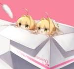 2girls :d ahoge bangs blush box cattail chibi eyebrows_visible_through_hair fate/extra fate/extra_ccc fate_(series) flower flying_sweatdrops gloves green_eyes hair_between_eyes hair_intakes heart highres in_box in_container long_sleeves looking_away multiple_girls nero_claudius_(bride)_(fate) nero_claudius_(fate) nero_claudius_(fate)_(all) open_mouth outstretched_arm parted_lips pink_background plant simple_background smile v-shaped_eyebrows veil white_flower white_gloves white_sleeves wide_sleeves yayoimaka03
