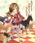 1girl animal animal_ears beagle blue_eyes blush braid brown_eyes brown_hair checkered checkered_floor chinese_zodiac detached_sleeves doberman dog dog_request floppy_ears floral_background hair_ribbon highres husky long_sleeves looking_at_viewer original pleated_skirt pomeranian_(dog) poodle pug purple_legwear purple_skirt red_ribbon ribbon sandals shiba_inu skirt standing thighhighs tomiwo tongue tongue_out twitter_username walking welsh_corgi wide_sleeves year_of_the_dog