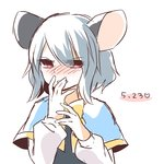 1girl animal_ears blush covering_mouth dated grey_hair kozakura_(dictionary) mouse_ears mouse_tail nazrin red_eyes short_hair solo tail touhou