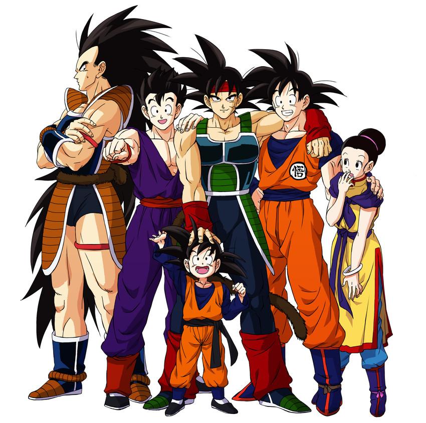 Bardock, Chi-chi, Raditz, Son Gohan, Son Gokuu, And Others